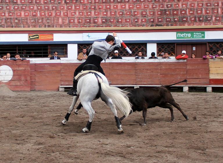 Para lanzar los carteles de la Belmonte se celebró un tentadero con Diego Ventura y Sebastián Peñaherrera