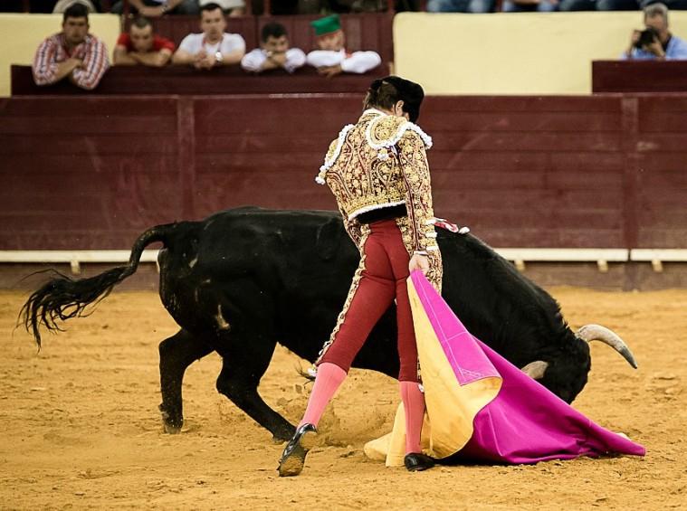 toros toreros 2015 portada fotos 5